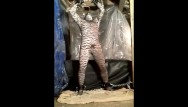 Gay tiger club - Horny trapped tiger gets free and jerks off